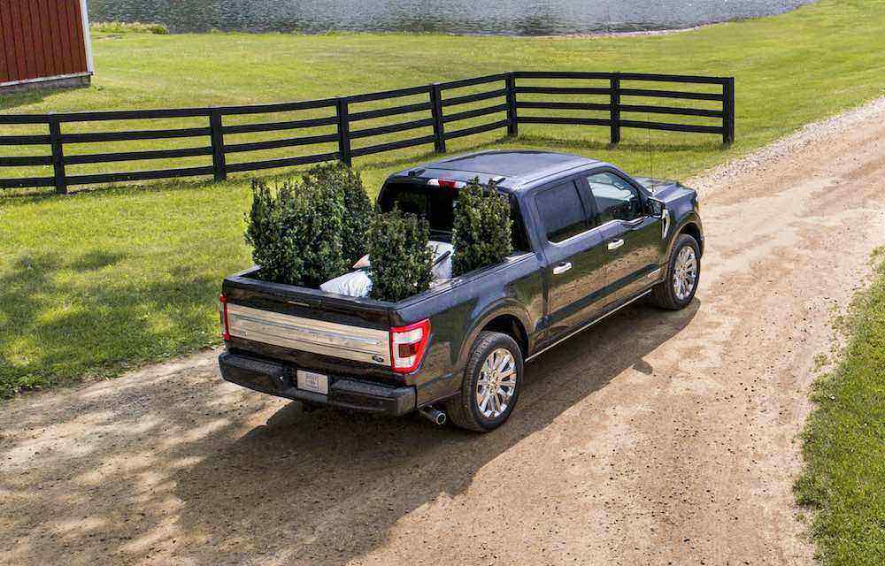 All-new F-150